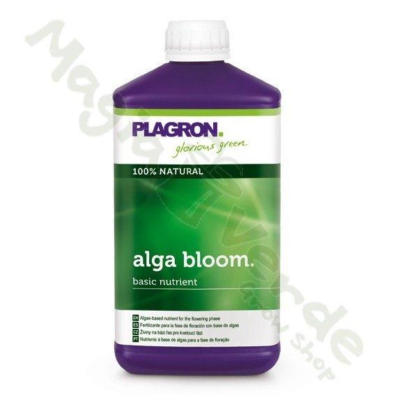 Alga bloom 1 L