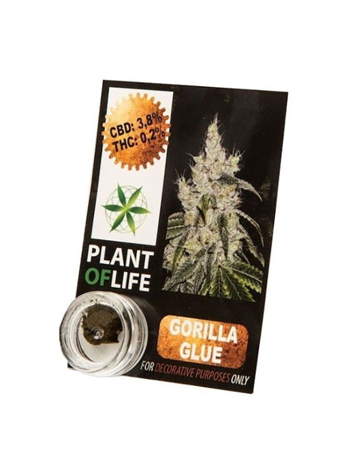 CBD Hash 3,8% Gorilla Glue